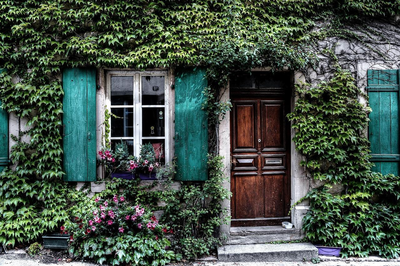 緑色のイメージと心理効果